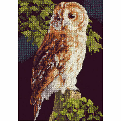 Owl On Fence Cross Stitch Kit
