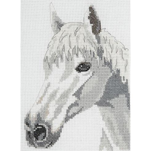 White Beauty Horse Cross Stitch Starter Kit