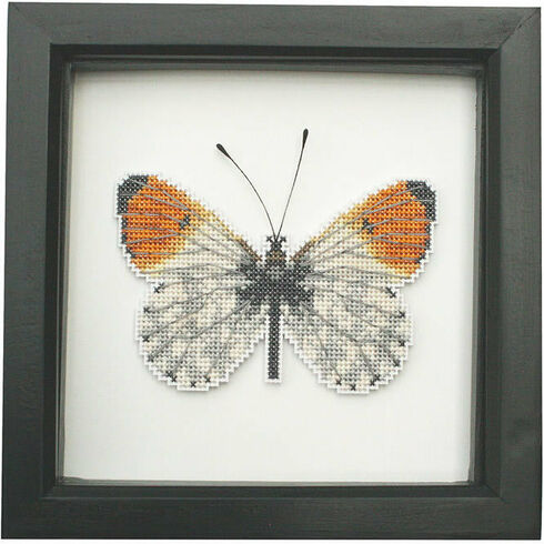 Orange Tip Butterfly Faux Taxidermy Cross Stitch Kit