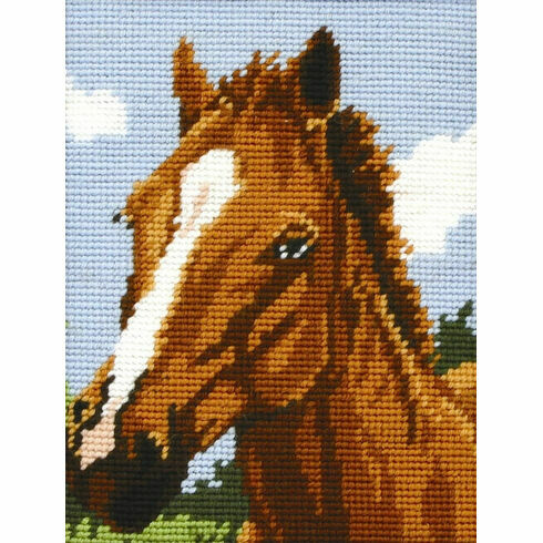 Horse Beginners Tapestry Kit