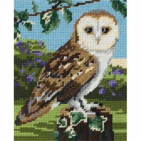 Owl Tapestry Kit for Beginners