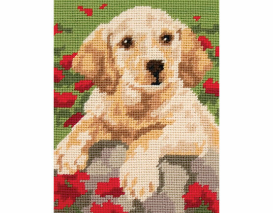 Labrador Puppy Beginners Tapestry Kit