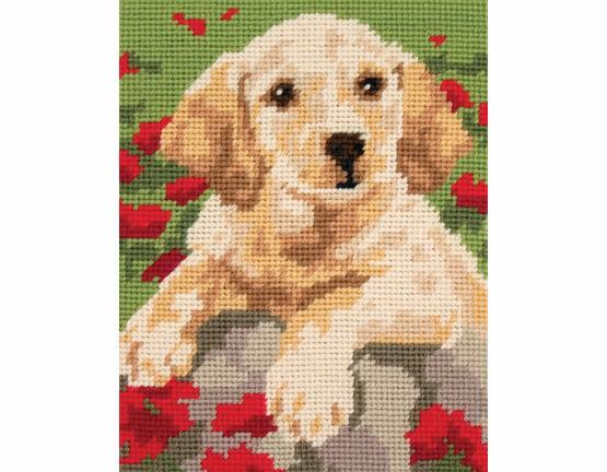 Labrador Puppy Beginners Tapestry Kit
