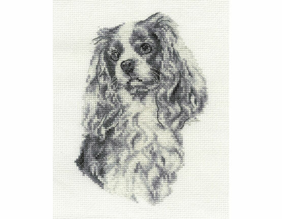 King Charles Cavelier Cross Stitch Kit