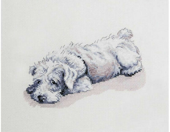 Murphy Cross Stitch Kit