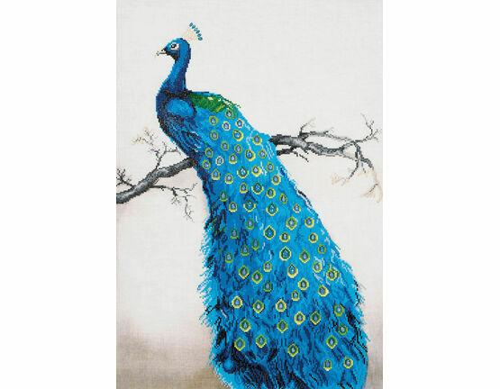 Blue Peacock Diamond Dotz Kit