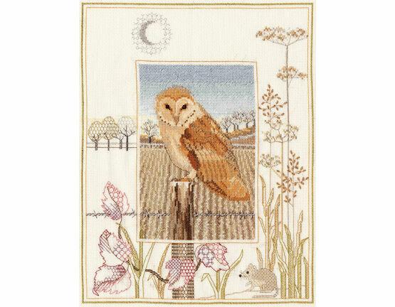 Wildlife - Barn Owl Cross Stitch Kit
