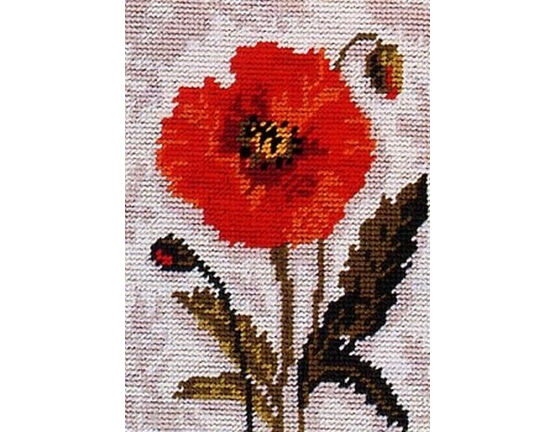 Poppy Beginners Tapestry Kit