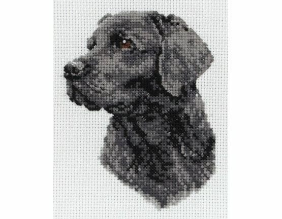Black Labrador Cross Stitch Kit